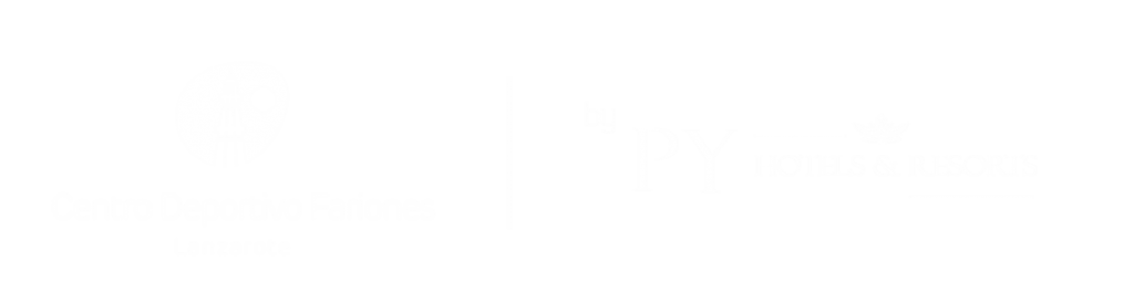 Logotipo PY HOTELS